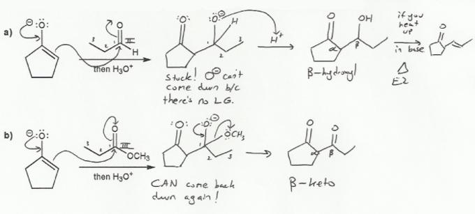 Organic Chemistry | MendelSet