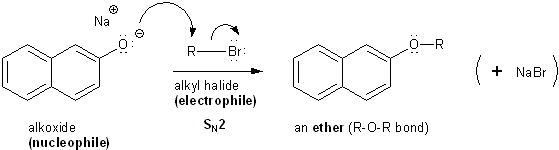 Amide and williamson ether synthesis of acetophenetidin