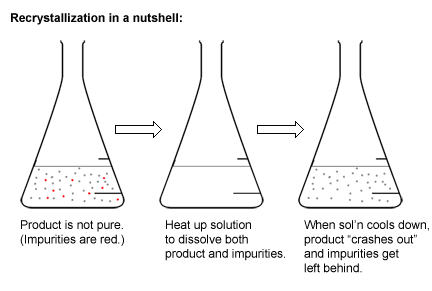 an experiment to recover purified benzoic acid using extraction and recrystallization Experiment 9 — recrystallization find and report the boiling points of the solvents you will be using for this experiment you've saved samples of benzoic acid.