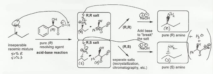 MS 906 - Stereochemistry Drills | MendelSet