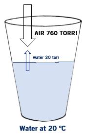 Simple and Fractional Distillation | MendelSet